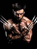 The Wolverine (FOX)