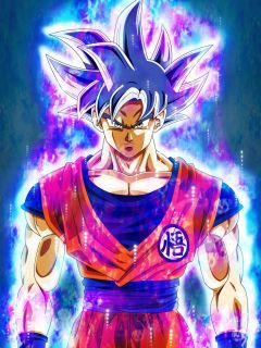 Goku (Mastered Ultra Instinct)